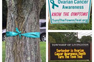 Livingston New Jersey Teal Sign Ribbon Announcement