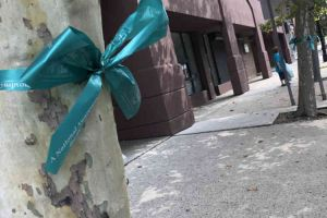 Trenton New Jersey Tree With Teal Ribbon