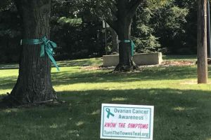 West Windsor New Jersey Sign Ribbons Tied On Trees